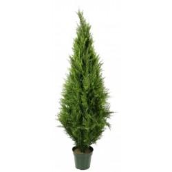 UV Resistant Cypress Pine Tree 2.1m