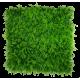 Mediterranean Fern Vertical Garden UV Stabilised 1m X 1m