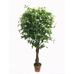 Artificial Rounded Ficus Tree 170cm
