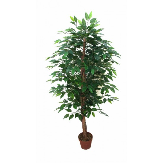 Artificial Bushy Ficus Tree 145cm