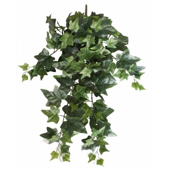 Mixed Ivy Hanging Bush 70cm
