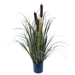 Brown Grass Plant 60 cm