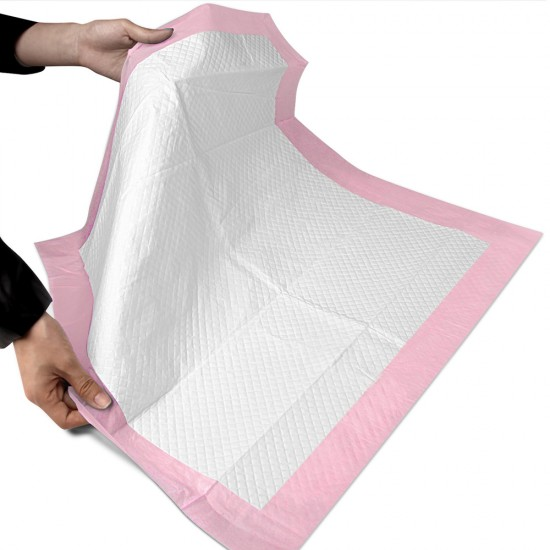 100 Piece Indoor Pet Toilet Training Pads - Pink