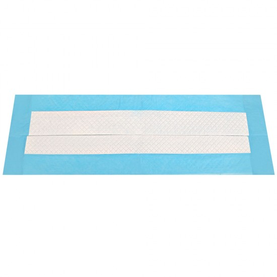 200 Piece Absorbent Pet Toilet Training Pads - Blue