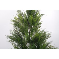 Cypress Pine 4ft - Highly Realistic