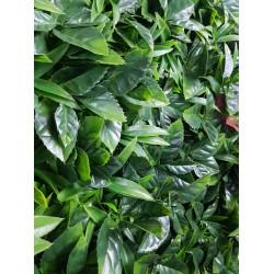 Green Meadows Vertical Garden UV Stabilised 1m X 1m
